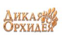 """Магазины """"Дикая Орхидея"""" отзывы"""
