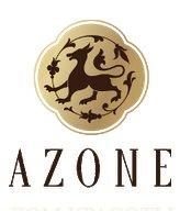 Дом красоты «Азоне» отзывы