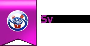 Sv Service - аренда авто
