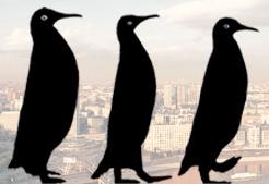 Отель «3 пингвина» отзывы